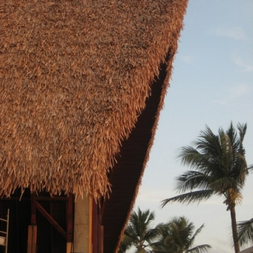 synthetic_thatch00012